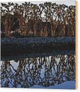 Reflections In First Light Wood Print