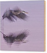 Reflections In Flight Wood Print