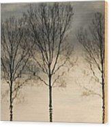 Reflections In Grey II Wood Print