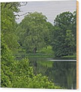 Reflections In Spring Green Wood Print