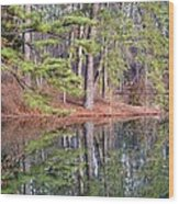 Reflections In The Pines Wood Print