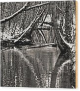 Reflections In The Snow Wood Print