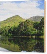 Reflections Ireland Wood Print