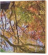 Reflections Of A Colorful Fall 002 Wood Print