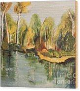 Reflections Of Age Thirteen Wood Print