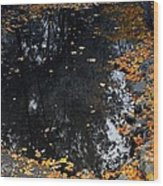 Reflections Of Autumn Wood Print