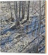 Reflections Of Early Spring 3 Wood Print