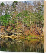 Reflections Of Earth Wood Print