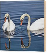 Reflections Of Elegance Wood Print