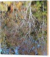 Reflections Of Fall 5 Wood Print