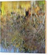 Reflections Of Fall1 Wood Print