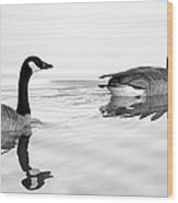 Reflections Of Geese Wood Print