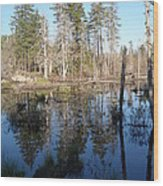 Reflections Of Maine Wood Print