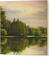 Reflections Of Summer Wood Print