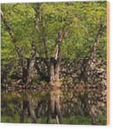 Reflections Of The Past Wood Print