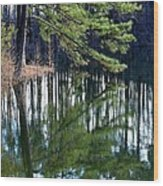 Reflections Of The Pine Wood Print