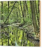 Reflections Of Tranquility Wood Print