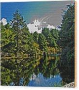 Reflections On A Lake Wood Print