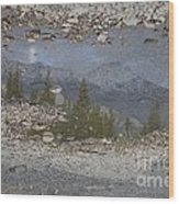Reflections On A Mountain Stream Wood Print