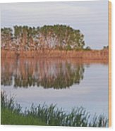 Reflections On A Summer Day Wood Print