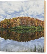 Reflections On Boley Lake Wv Wood Print by Dick Wood
