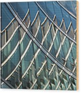 Reflections On Building Windows Wood Print