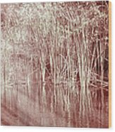 Reflections On Lake Trafford Wood Print