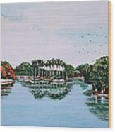Reflections On Lal Bagh Lake Wood Print