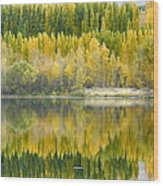 Reflections On The Columbia Wood Print