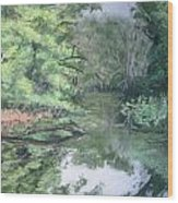 Reflections On The Valley River Wood Print