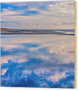 Reflections On The Beach Wood Print