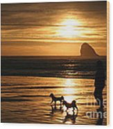 Reflections-peace At Sunset Wood Print