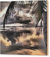 Reflections Through The Palm Wood Print