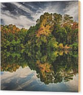 Reflections Wood Print