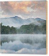 Reflective Elder Wood Print