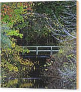 Reflective Fall Wood Print