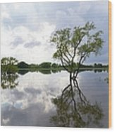 Reflective Flood Waters Wood Print