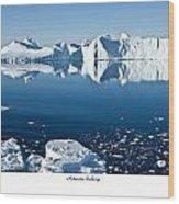Reflective Icebergs Wood Print by David Barringhaus