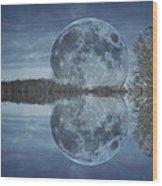 Reflective Paradise Wood Print