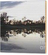 Reflective Pond Wood Print