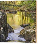 Reflective Pools Wood Print
