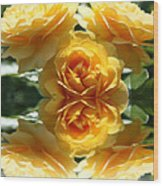 Reflective Prettiness Wood Print