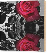Reflective Red Rose Wood Print