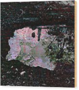Reflective Skylight On A Small Pond Of Water # 1 Wood Print