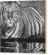 Reflective Tiger Wood Print