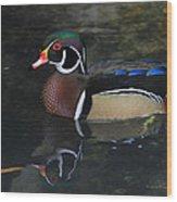 Reflective Wood Duck Wood Print by Deborah Benoit