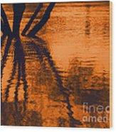 Reflectivity Wood Print