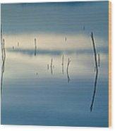 Blue Reflexions Wood Print