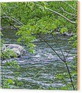 Refreshing Wood Print by Robert J Andler