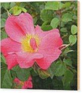 Refreshingly Spring Wood Print